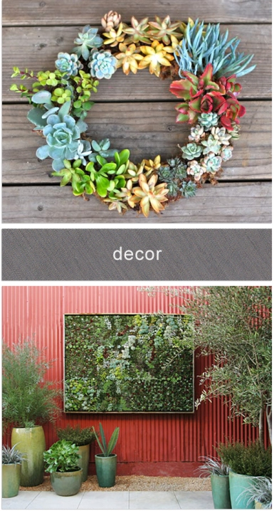 succulent wreath ceremony backdrop