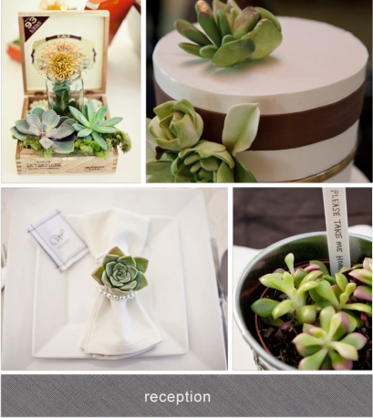 succulents centrepiece cake place setting favor